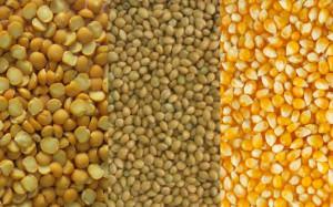 Кукуруза, горох и семена