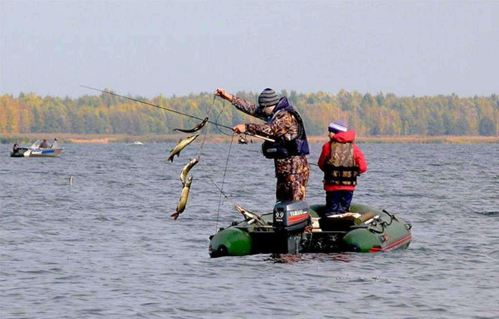 где сейчас ловят рыбу московская область