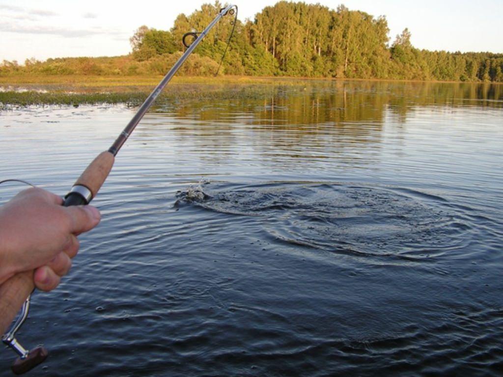 сроки рыбалки в рязанской области в 2016 году