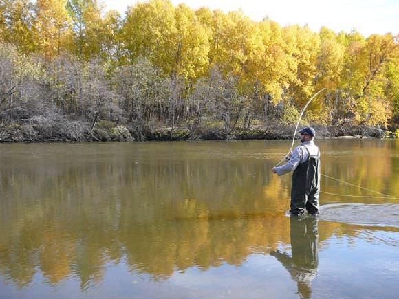 ловля рыбы нахлыстом на малых реках видео