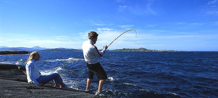 на что лучше ловить на море