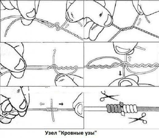 кровные узлы