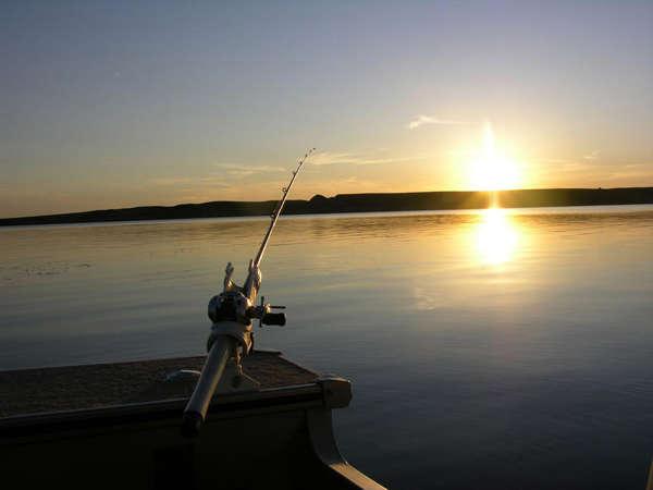 Ловля рыбы вечером