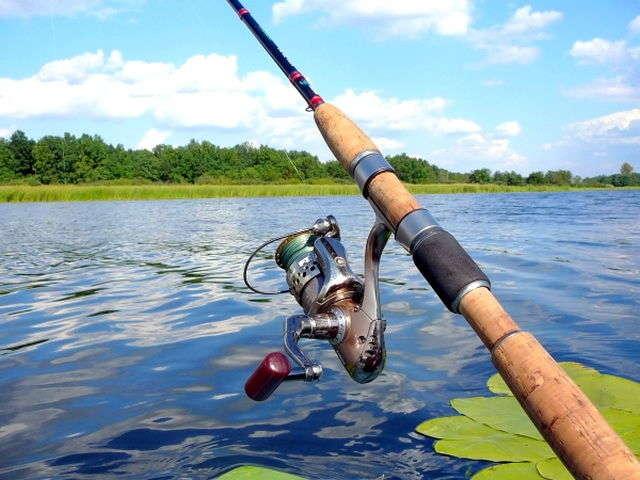 Ловля рыбы спиннингом