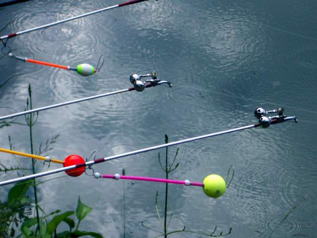 Как ловить осетра