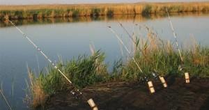 Рыбалка с помощью донки