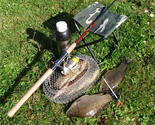 Караси и инструменты для его ловли