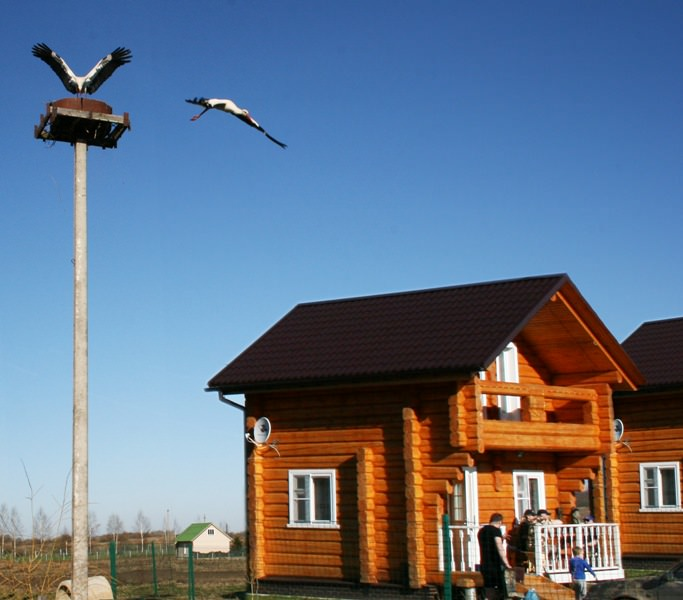 База отдыха Смоленской области Ивушка