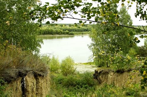 Базы отдыха Омской области