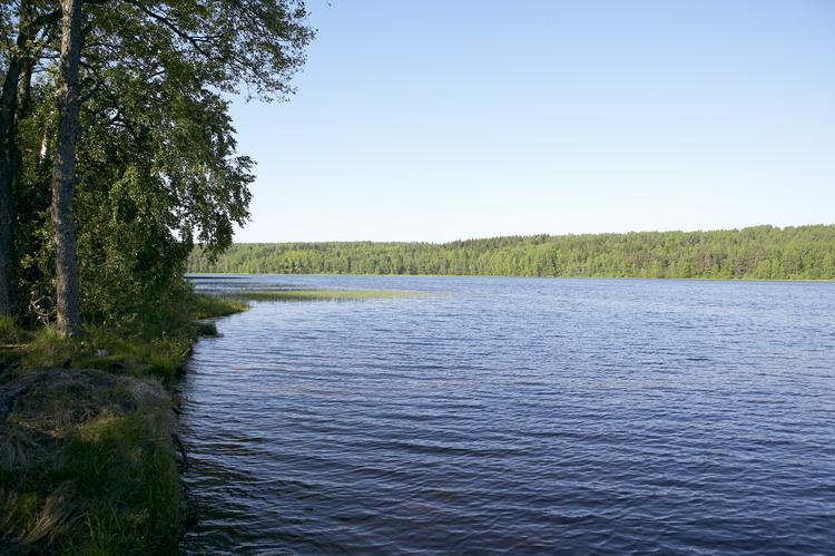 Деревня Захарово, река Донинка