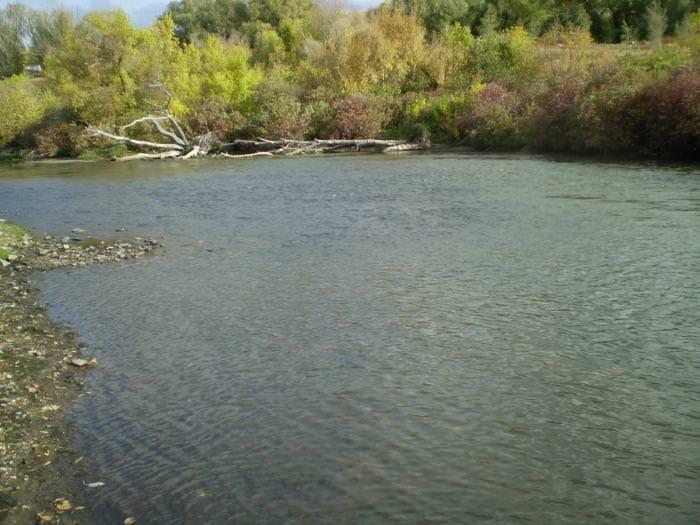 Село Верхнее Мячково, рыбалка «Гарантия»