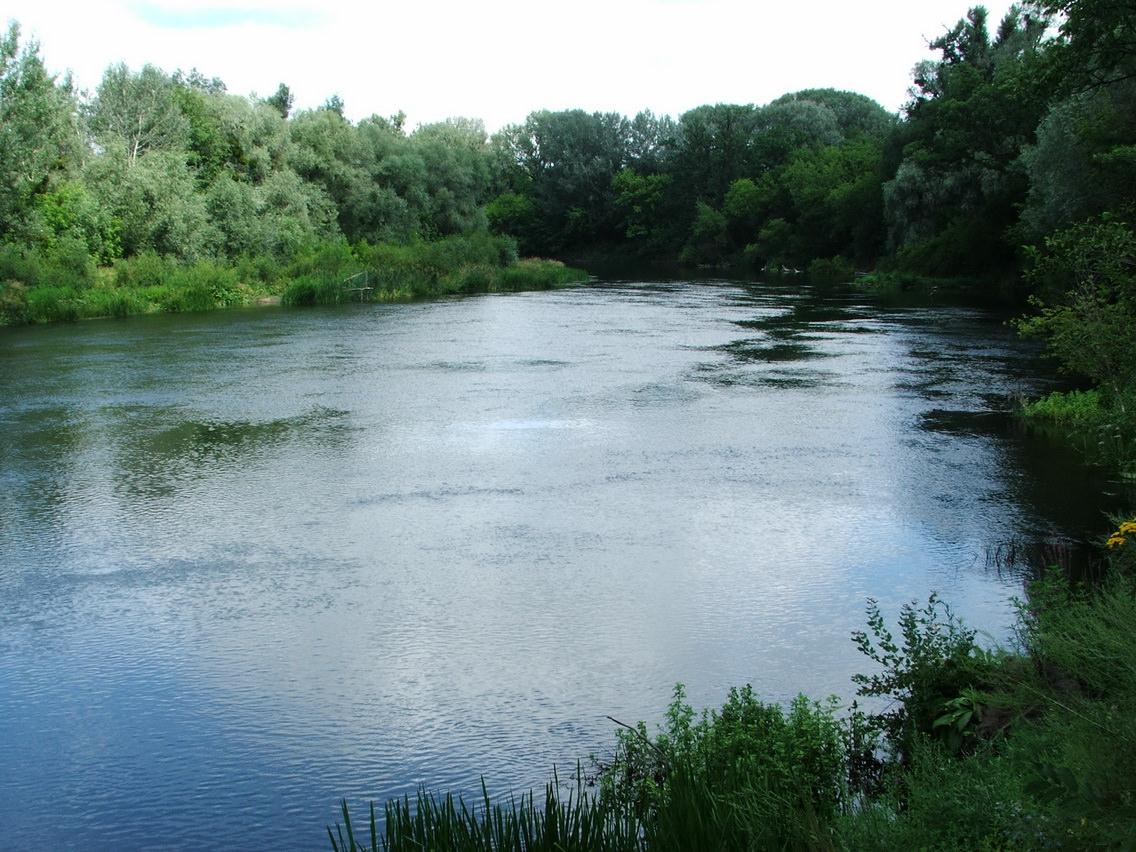 Северский Донец река