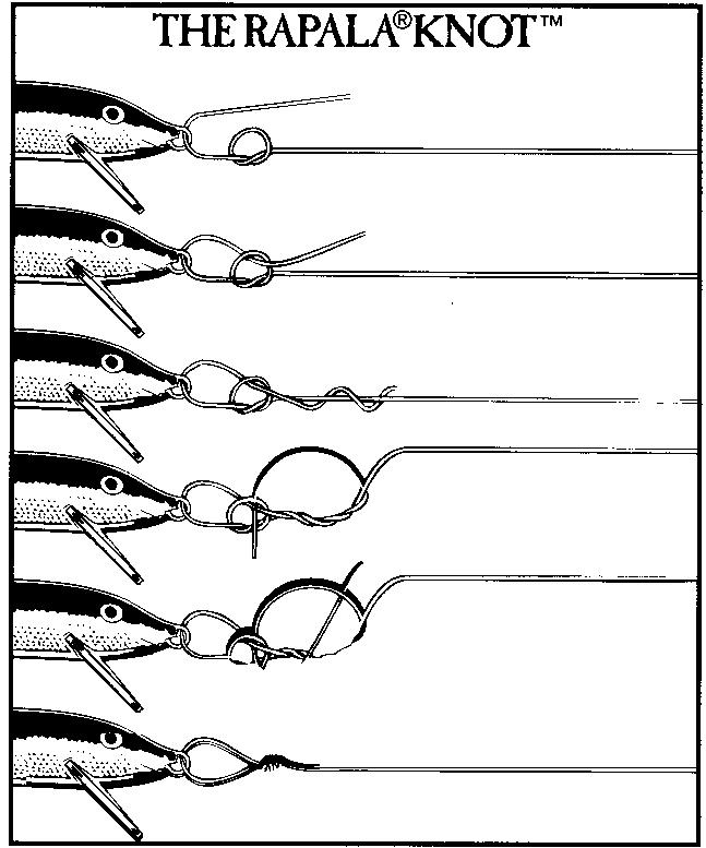 Rapala knot